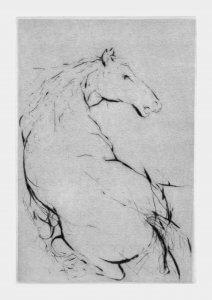 """""""BÍLÝ KŮŇ / WHITE HORSE"""" - 2015 - 195x130mm - C4 - Kč 1 500,-"""